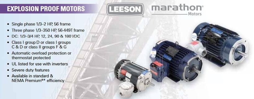 LEESON Explosion Proof Motors